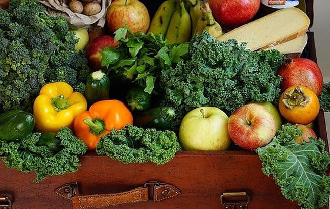 Vitamin C and its impact on the immune system