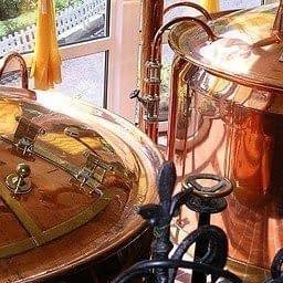 beer fermentation