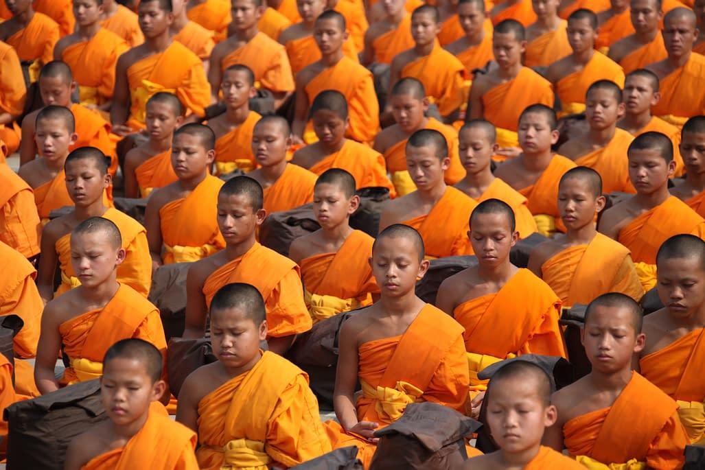 meditating buddhists
